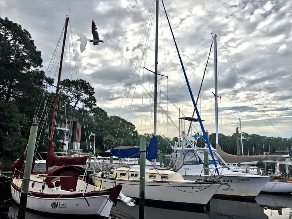 boats by Bayou Joe's