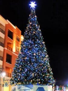 Branson Christmas Tree