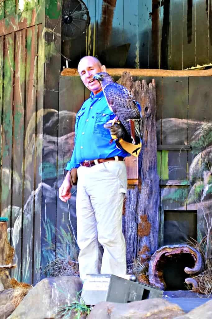 Man holding a hawk
