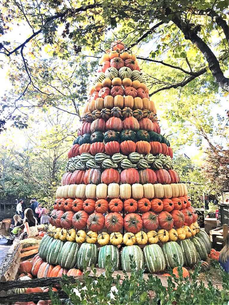 tree made out of pumpkins