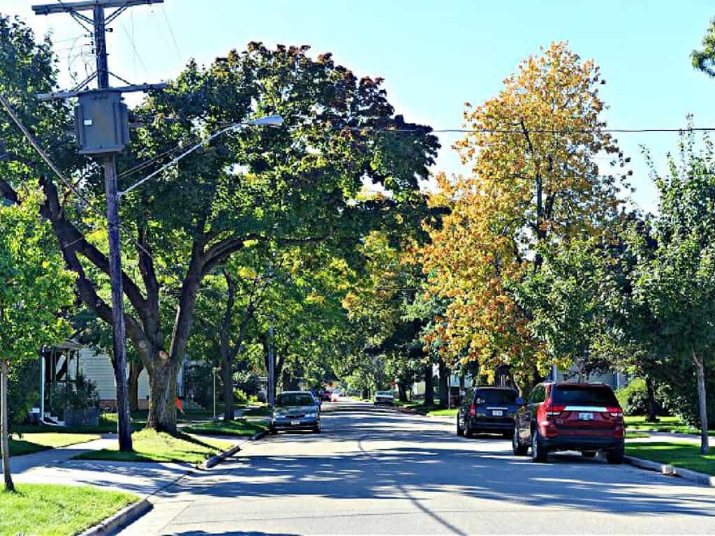 tree-lined street in the Fox Cities