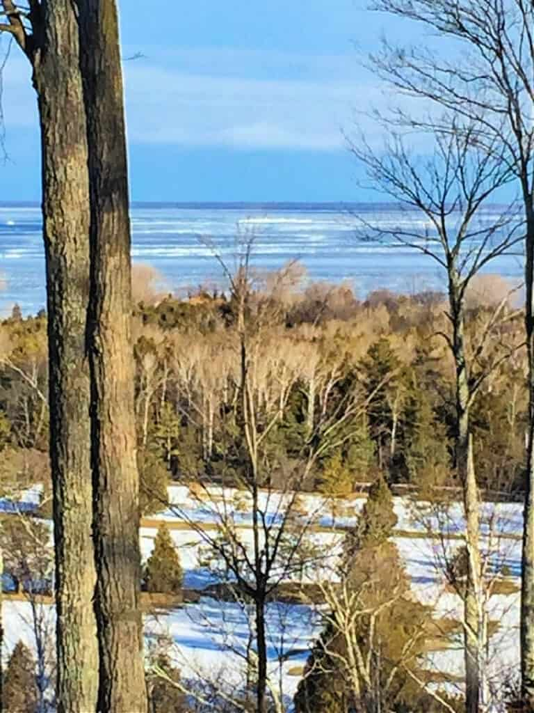 view of lake through trees