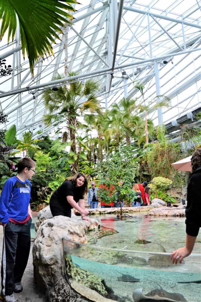 inside the aquarium