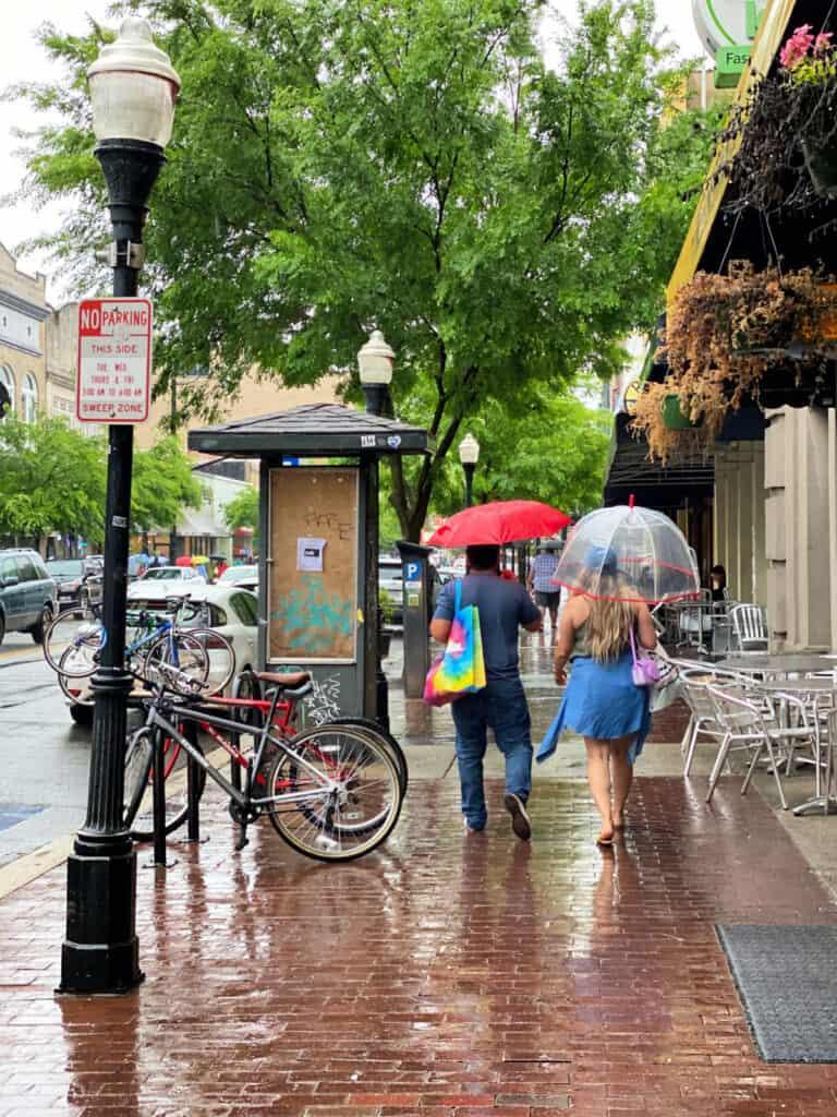 Rain in Savannah