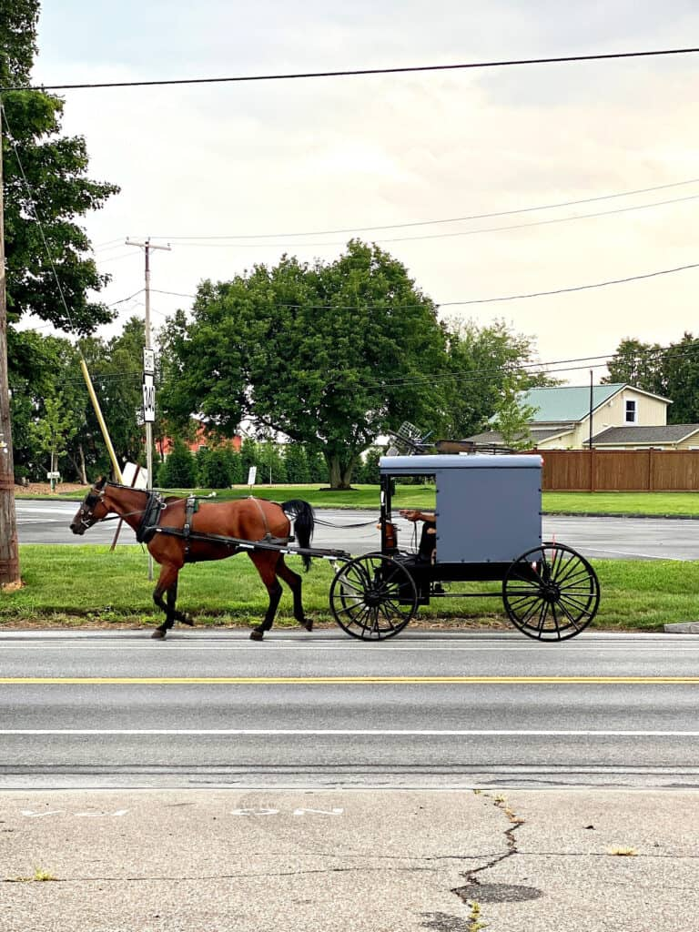 Amish horse and buggy on parkway.