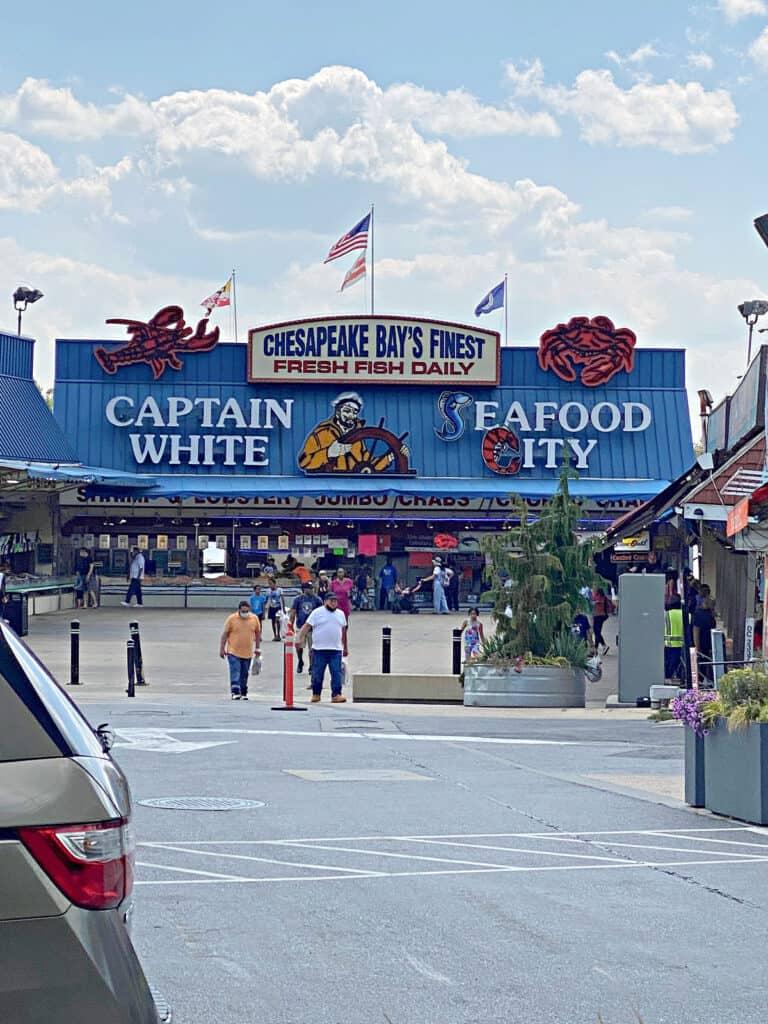 Chesapeake Bay's Finest Seafood City market.