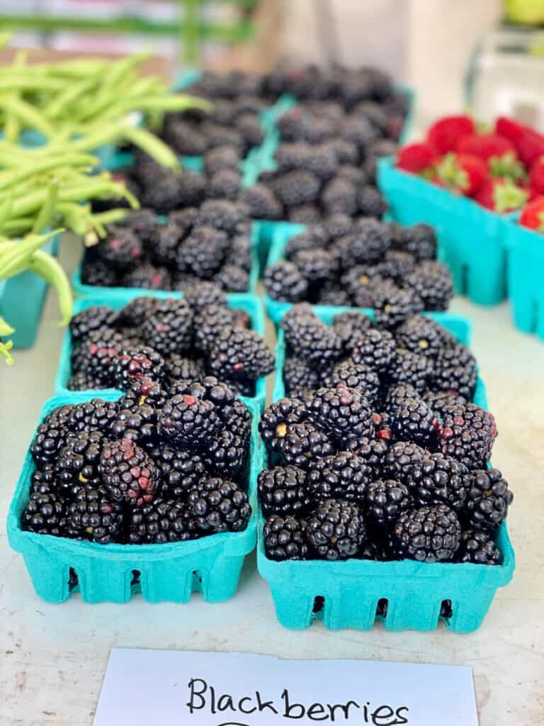 Two rows of baskets filled with blackberries for sale.