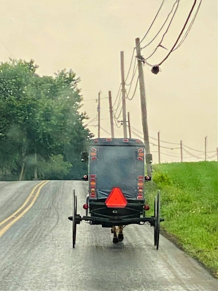 Amish horse and buggy going down a road.