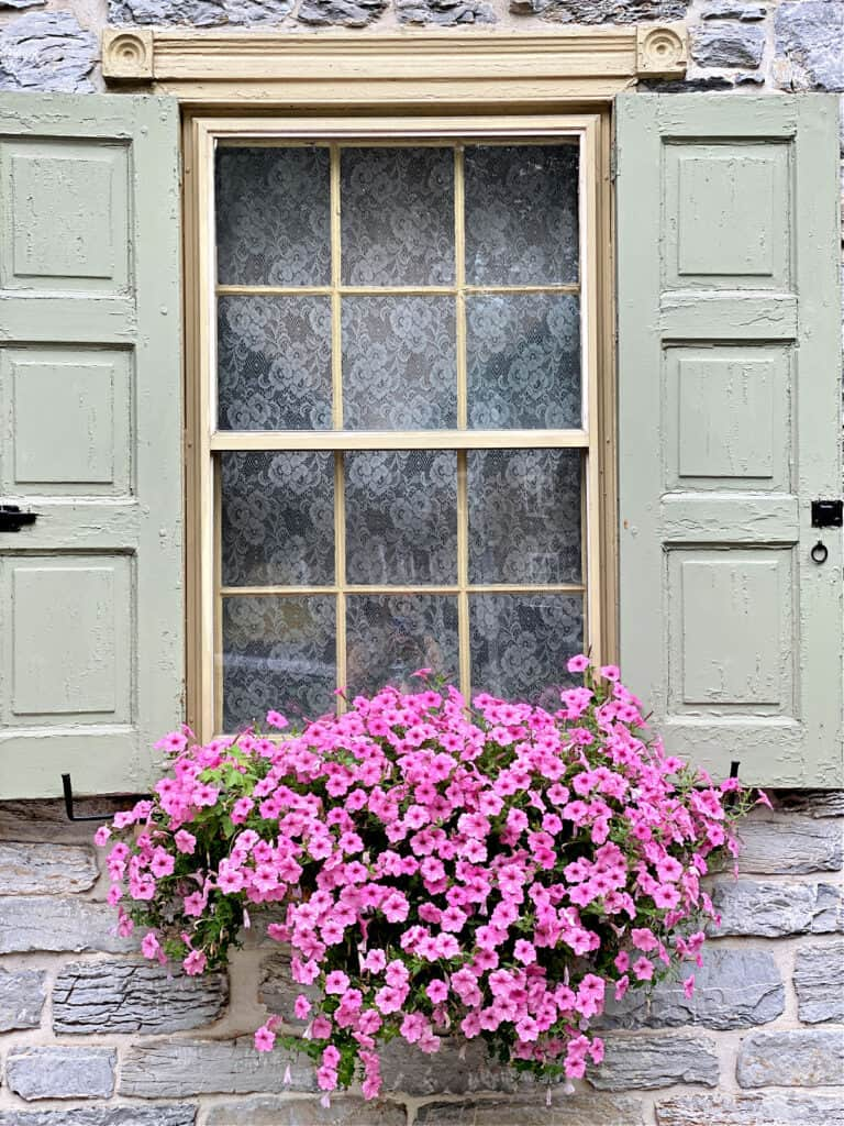 Gray stone building with light green shutters and a window box.